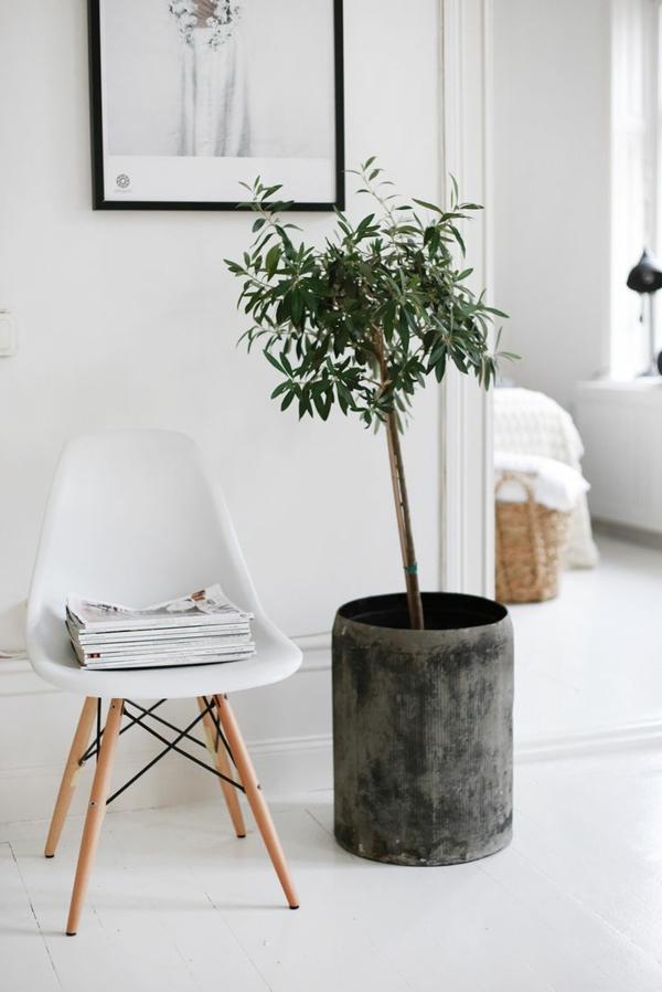 kleiner-Stuhl-grüne-Palme-und-ein-Bild-an-der-Wand