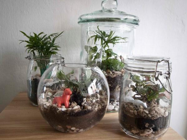 terrarium einrichten- vier modern aussehende designs