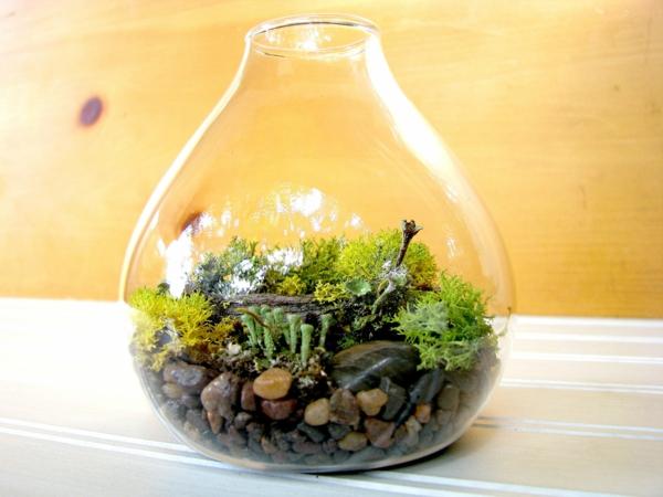 terrarium einrichten- schönes modernes design