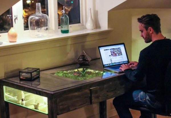 terrarium einrichtung - in einem computertisch