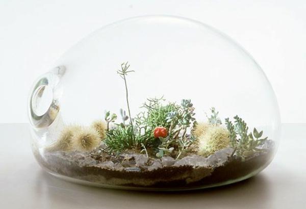Terrarium Einrichtung 45 Kreative Ideen Archzine Net