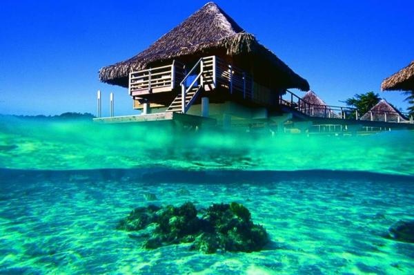 urlaub-in-französisch-polynesien-unter-und-über-dem-wasser