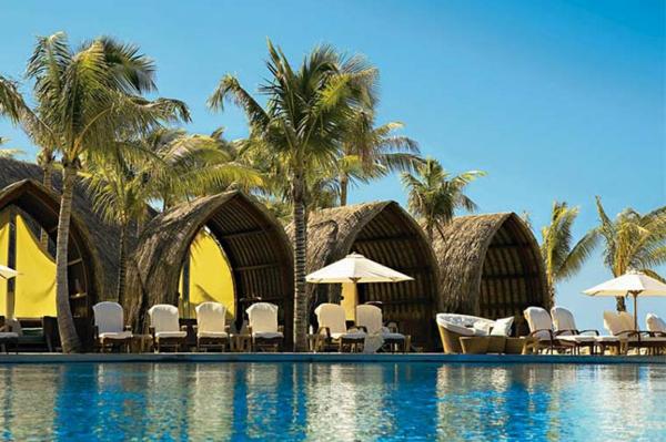 urlaub-in-französisch-polynesien-wunderschöne-palmen