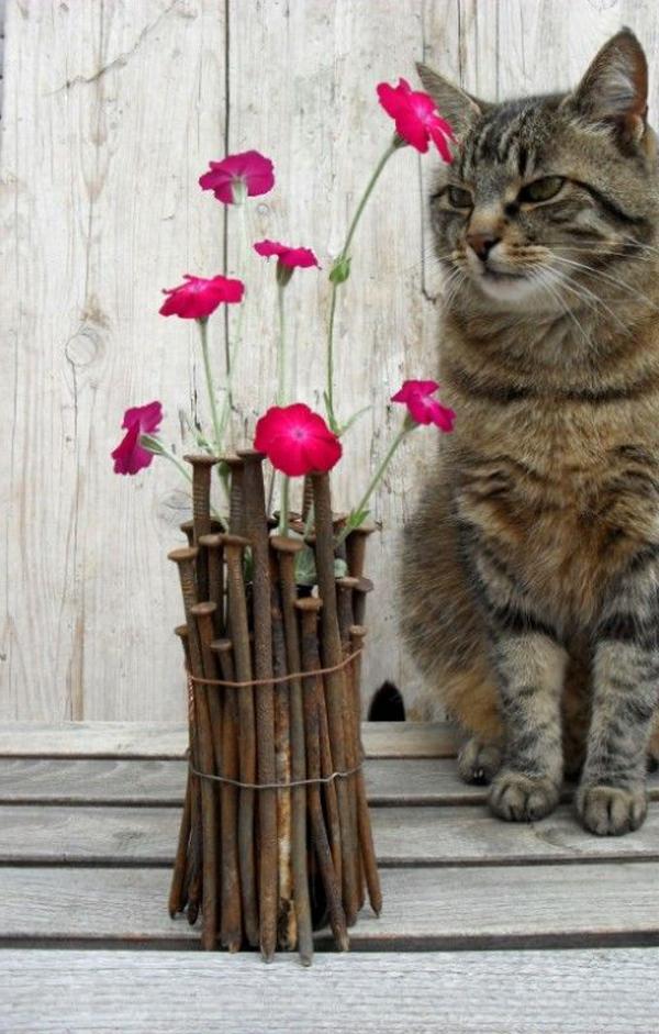 katze-im-hintergrund-der-rosa-blüten