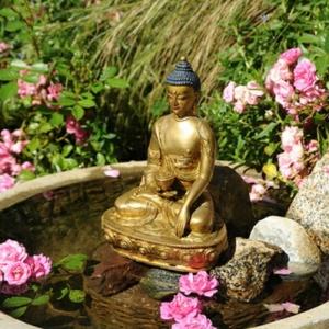 Buddha Brunnen: 50 inspirierende Fotos!