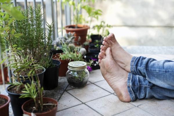 Kräutergarten-selbst-gemacht