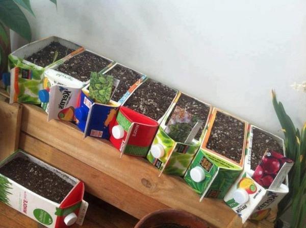 Kreative-Kübelpflanzung
