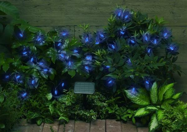 busch mit coolen solarleuchten in blauer farbe