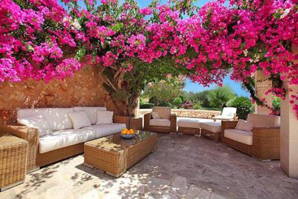 der-garten-in-pink-mit-braunem-möbeln