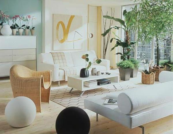 pflanzen-als-deko-und-leben-erfüllendes-element
