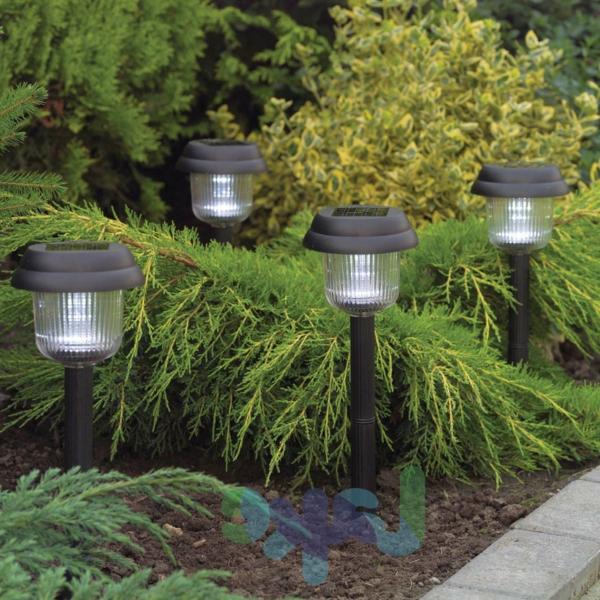 grüne pflanzen und solarlampen im garten