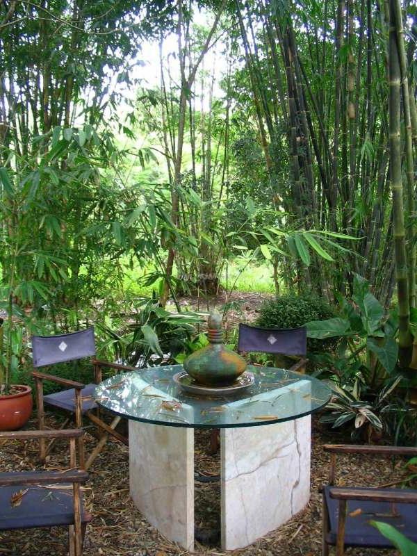 bambus-garten-mit-einem-hölzernen-tisch-und-stühlen