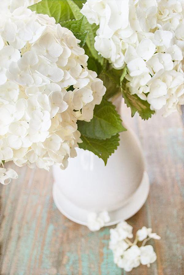 tischdekoration-aus-weißen-hortensien