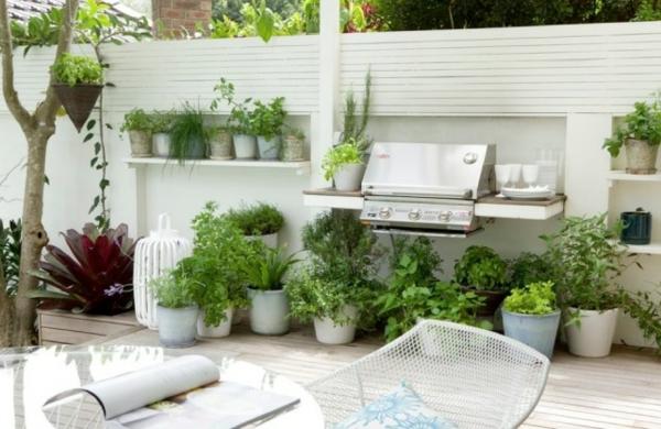 ergänzung-zum-grill-die-kräuterpflanzung-auf-dem-balkon