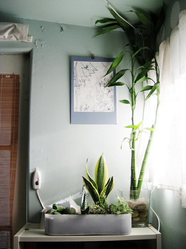 Schlafzimmer Pflanzen 2 #19: Schlafzimmer Mit Vielen Grünen Pflanzen