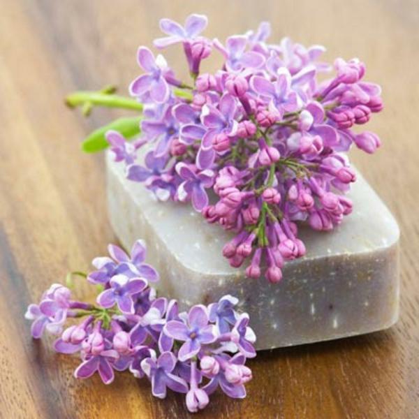flieder-variante-von-aromaseife
