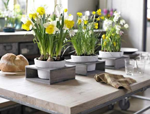 Zwiebelblumen-als-tischdekoration