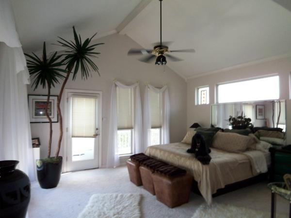 design : große wohnzimmer pflanzen ~ inspirierende bilder von ... - Grose Wohnzimmer Pflanzen