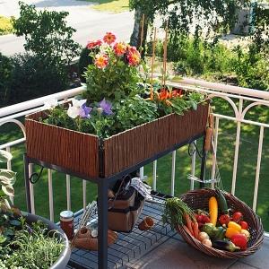 Der eigene Kräutergarten auf Balkon