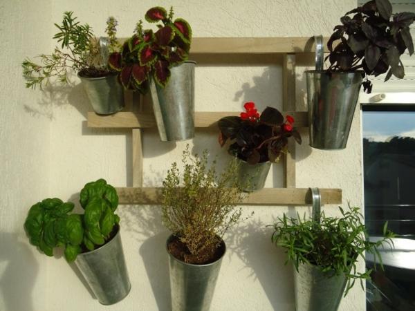krautergarten-balkon-pflanzen-vertikal-aufhaengen