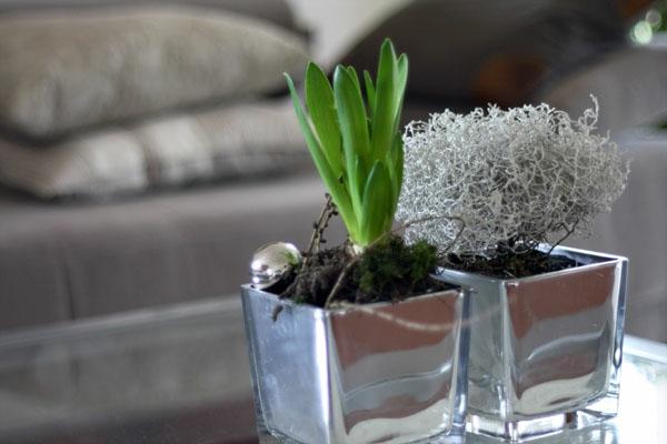 Mini Orchideen Tischdeko ~ Die neuesten Innenarchitekturideen
