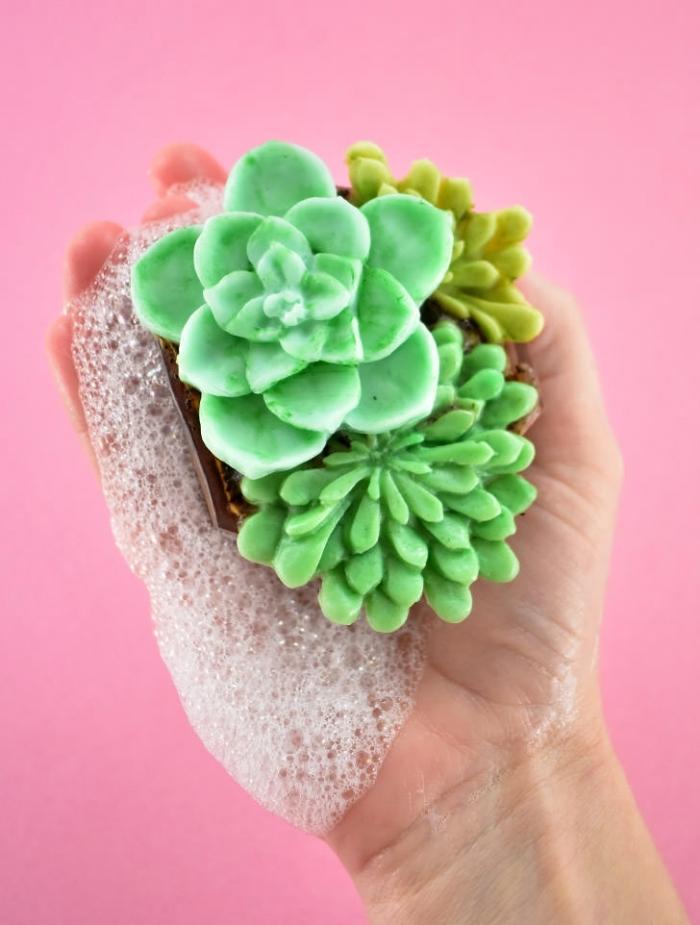 selsbstgemachte seifen sukkulenen, naturseife selber machen, kleine grüne pflanzen