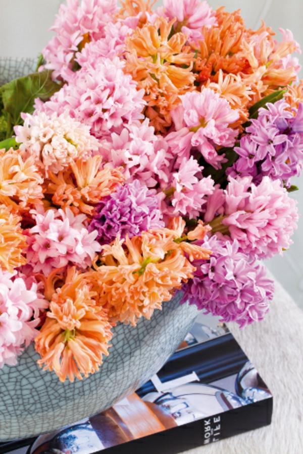 orange-gelb-rosa-pink-blühende-schnittblumen-für-zimmer