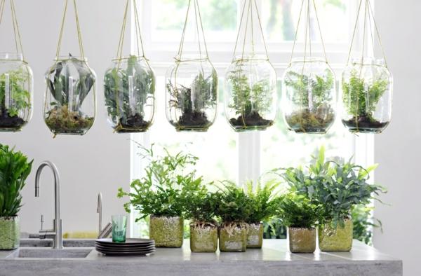 Zimmerpflanzen für das perfekte Ambiente im Haus - Archzine.net