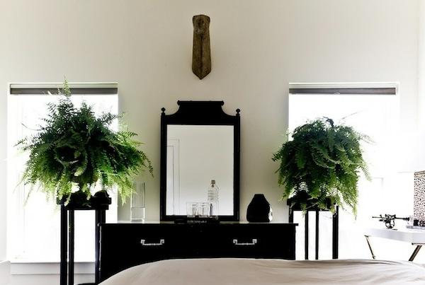 pflanzen-im-schlafzimmer-mit-einem-eleganten-spiegel