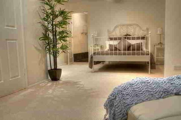 pflanzen-im-schlafzimmer-mit-einem-interessanten-bett