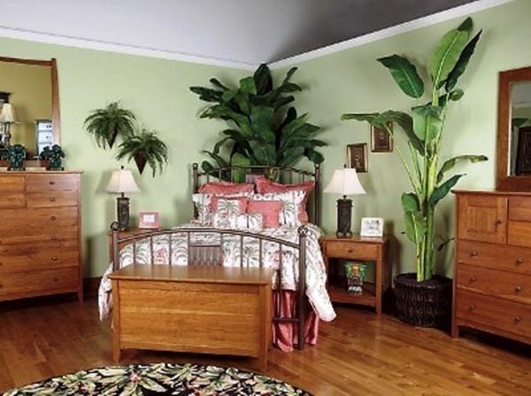 pflanzen-im-schlafzimmer-mit-hölzerner-gestaltung