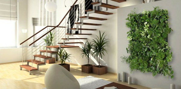 Zimmerpflanzen f r das perfekte ambiente im haus - Giftige zimmerpflanzen fur kinder ...