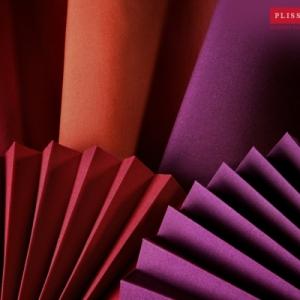 Plissees als dekorativer Sonnenschutz