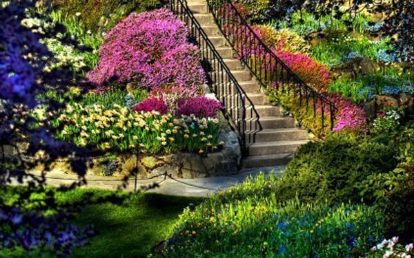Farbenfrohe-gestaltung-des-gartens-mit-treppe