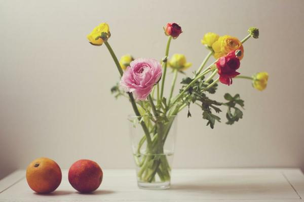 wildpflanzen-schnittpflanzen-früchte-glas-tasse