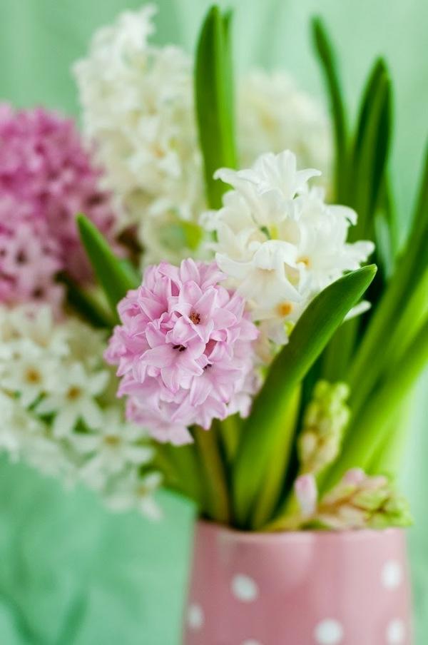 rosa-und-weiße-blütenpracht-auf-grünem-hintergrund