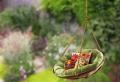 Gartenschaukel zur Entspannung Pur!