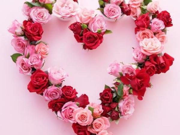 geschenk-valentinstag-rot-rosa-rosen