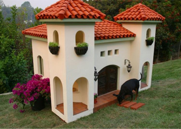 penthouse-für-hunde-edel-schick-neu-modern-farbenfroh-herausragend-besonders
