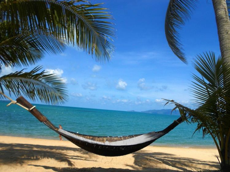 palmen-strand-schick-luxus-liege-hängend-am-wasser-sommer-sonne-edel