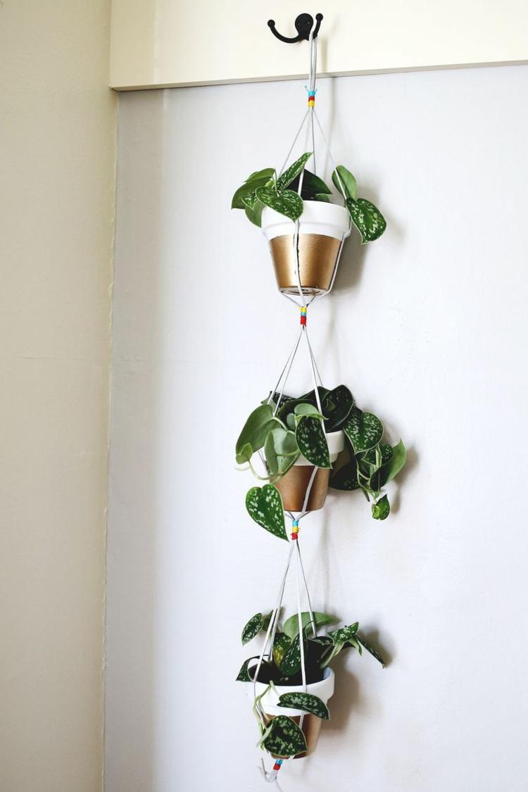 hängende-bepflanzung-ideal-für-jeden-raum-besonders-schick-edel-modern-einzigartig