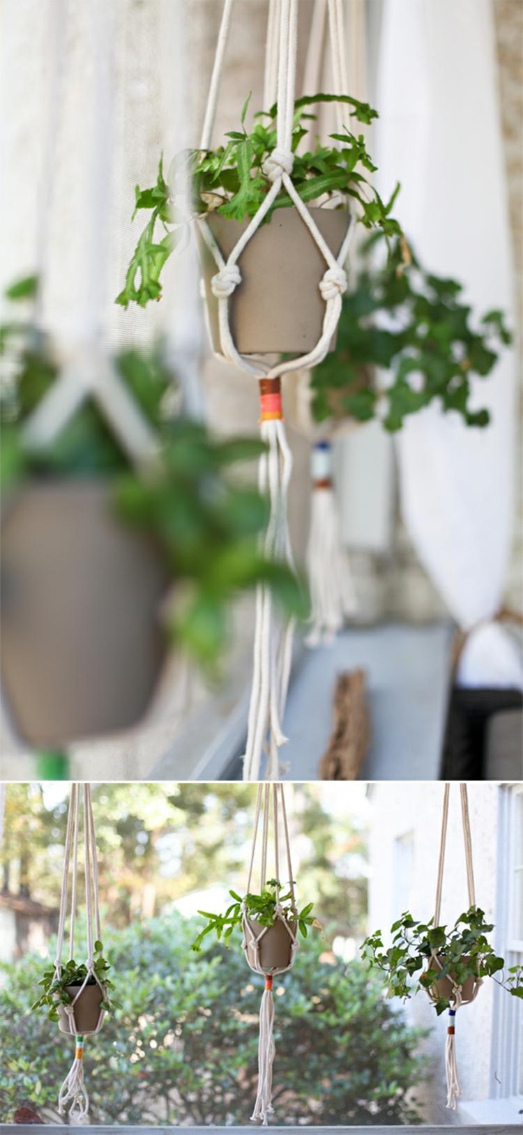 dekoration-pflanzen-schlicht-edle-besonders-modern-einzigartig-fest-an-seilen-hängend-schick