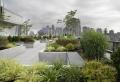 Gräser Garten – verzaubernd und entzückend für besondere Augenblicke