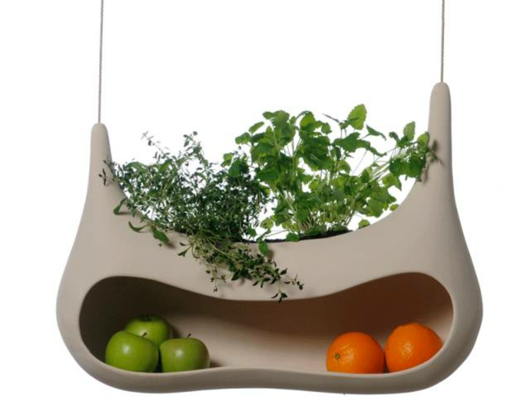 hängende-topf-pflanzen-in-kombination-mit-früchten-edel-besonders-modern-schick