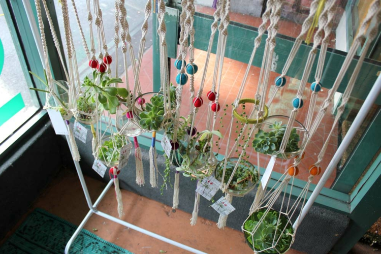 hängende-pflanzwelten-der-besonderen-art-schick-schlicht-edel-besonders-modern