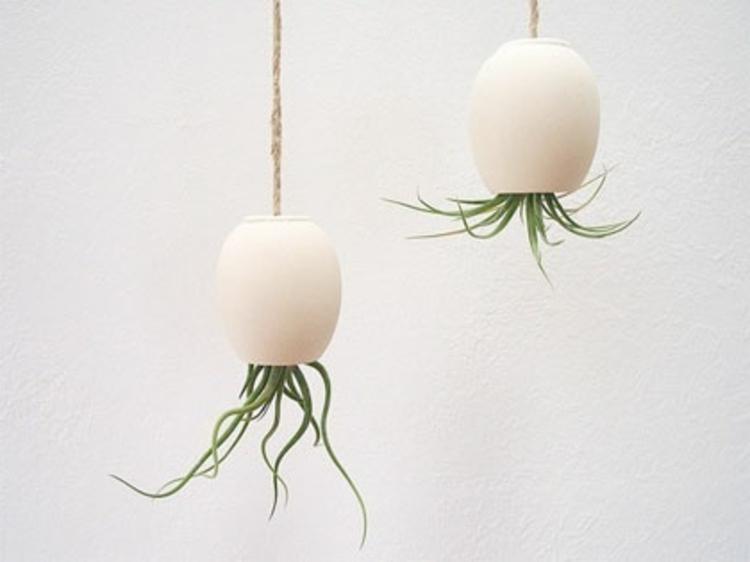 schlicht-schick-edel-besonders-weiß-modern-fein-einzigartig-pflanzungen-kopfüber-an-seilen