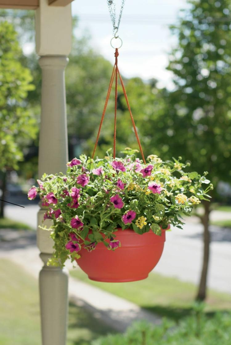 schick-schlicht-besonders-modern-blütenpracht-edel-neu-einzigartig-fein-idee-outdoor