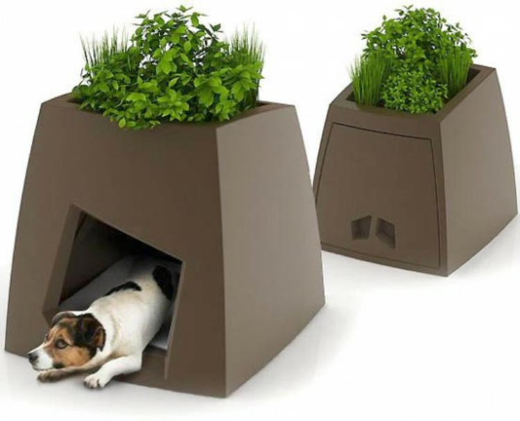 hunde-haus-der-besonderen-art-als-kübel-pflanze-schick-lustig-praktisch