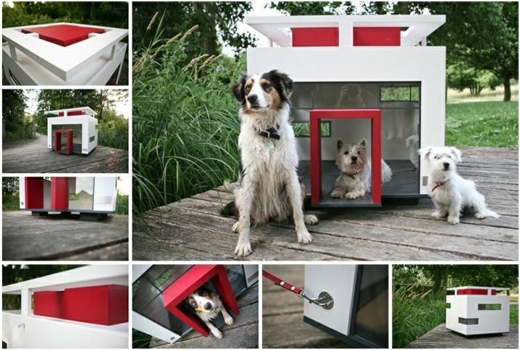 hunde-haus-schick-edel-in-weiß-rot-grau-glas-schick-edel-besonders-schlicht