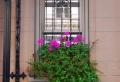 Fenstergitter – schöne Ausführungen zum Fensterschutz